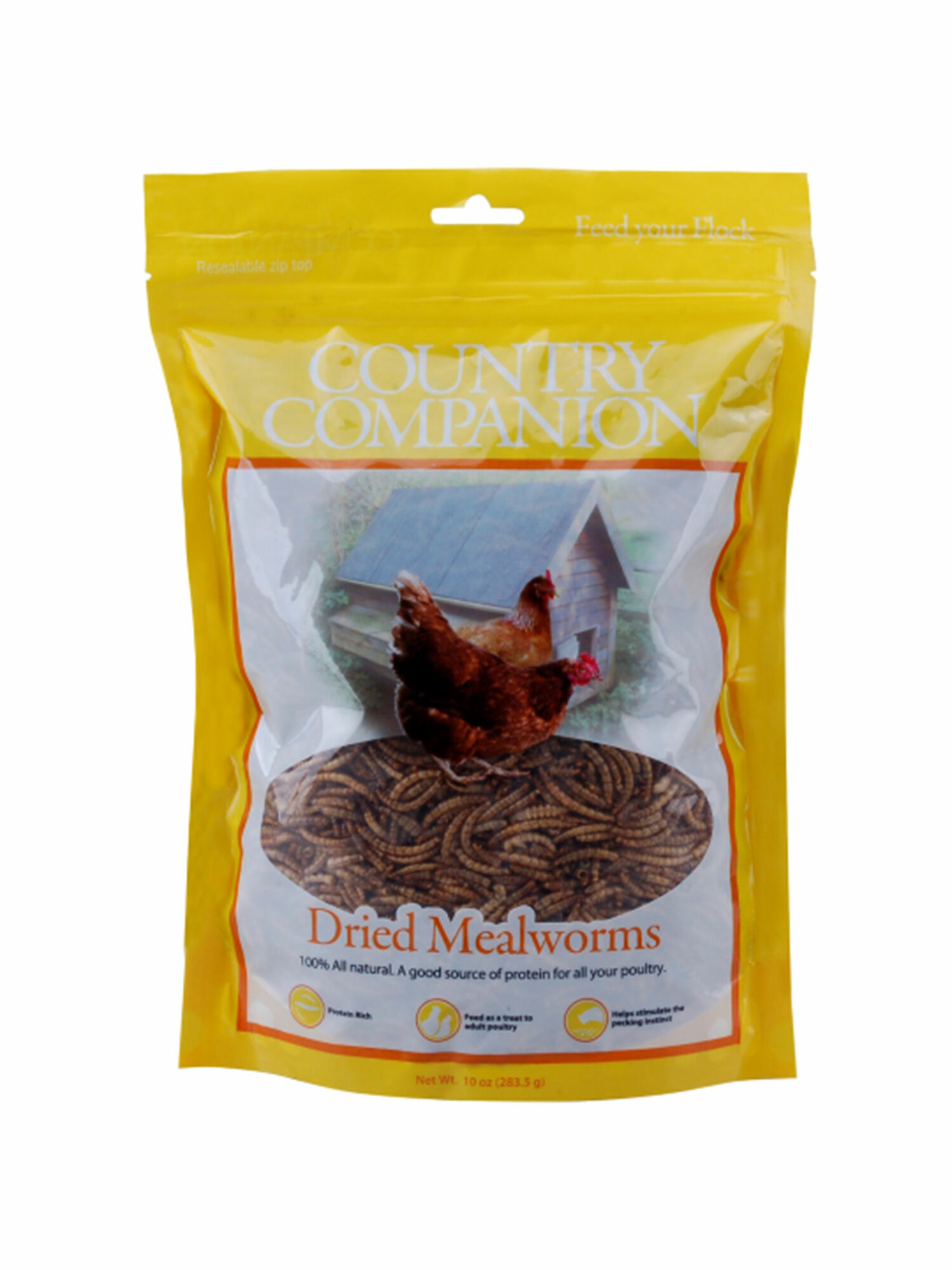CC Mealworms S.jpg