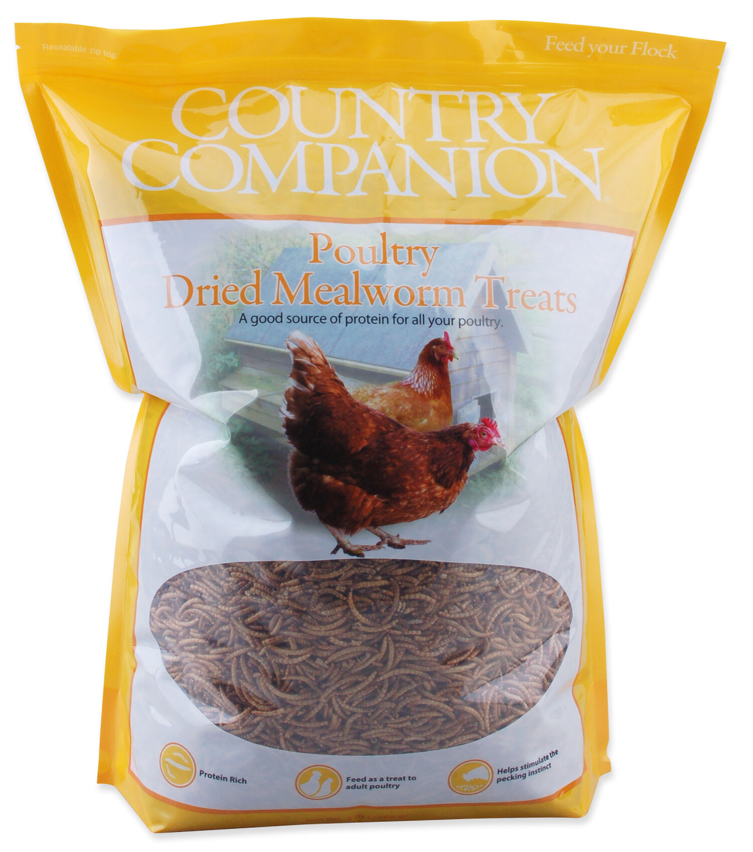 COCO_mealworms30.jpg