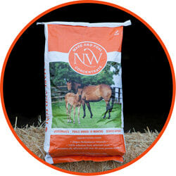 Northwest Mare and Foal Concentrate